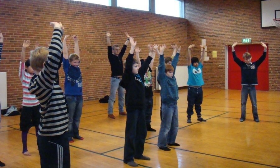 Danish Physical Education